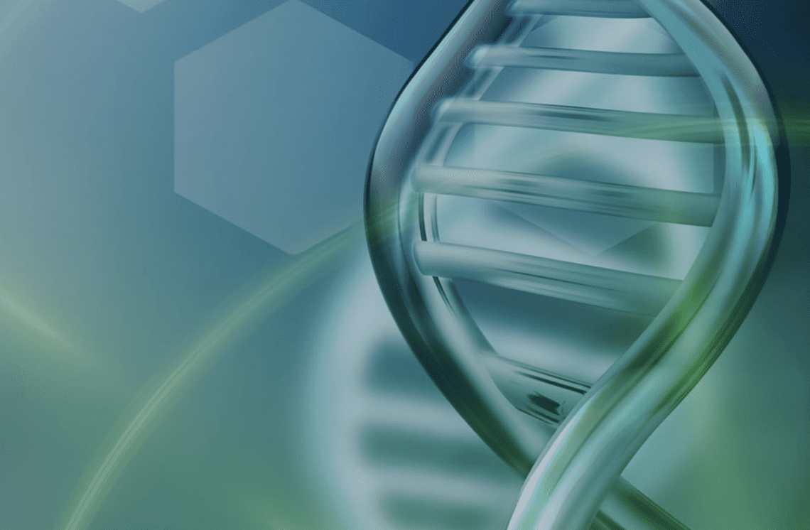 DNA Transfection